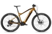 E-Bike Fuji Ambient Evo 29 1.1