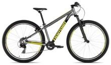 Kinder / Jugend Eightshot X-COADY 275 FS grey/yellow