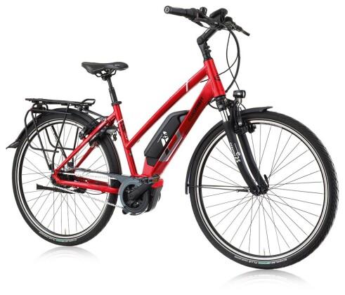 E-Bike Gudereit EC-4 2020