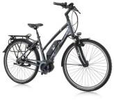 E-Bike Gudereit EC-5.5