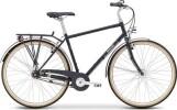 Citybike Breezer Bikes Downtown 8+