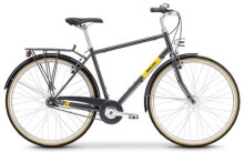 Citybike Breezer Bikes Downtown 7+