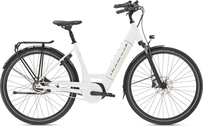 E-Bike Diamant Beryll Deluxe+ TIE 2020