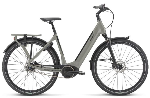 E-Bike GIANT DailyTour E+ 2 LDS 2020