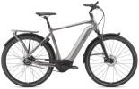 E-Bike GIANT DailyTour E+ 1 BD GTS