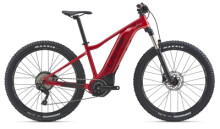 E-Bike Liv Vall-E+ 2