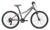 E-Bike Liv Enchant 24