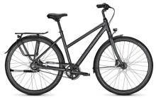 Citybike Raleigh DEVON PRO phantomgrey Trapez