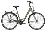 Citybike Raleigh DEVON 8 urbangreen Wave