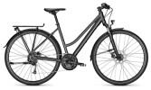 Trekkingbike Raleigh RUSHHOUR LTD diamondblack Trapez