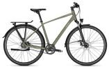 Trekkingbike Raleigh RUSHHOUR 6.5 urbangreen Diamant