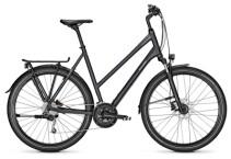 Trekkingbike Raleigh RUSHHOUR 4.0 XXL phantomgrey Trapez