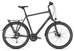 Trekkingbike Raleigh RUSHHOUR 4.0 XXL phantomgrey Diamant