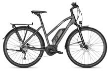 E-Bike Raleigh STOKER 9 diamondblack Trapez