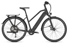 E-Bike Raleigh STANTON 11 magicblack Trapez