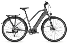 E-Bike Raleigh PRESTON 9 granitegrey Trapez