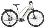 E-Bike Raleigh PRESTON 10 starwhite Trapez
