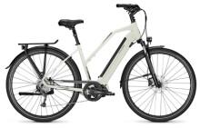E-Bike Raleigh SHEFFIELD 9 starwhite Trapez