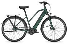 E-Bike Raleigh SHEFFIELD 8 kombugreen Trapez