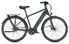E-Bike Raleigh SHEFFIELD 8 kombugreen Diamant