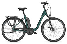 E-Bike Raleigh KINGSTON PREMIUM kombugreen Comfort