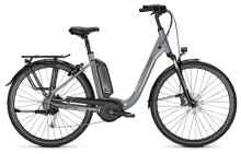 E-Bike Raleigh KINGSTON 9 volcanogrey Comfort