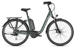 E-Bike Raleigh KINGSTON 9 techgreen Comfort