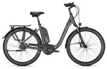 E-Bike Raleigh KINGSTON 8 XXL granitegrey Comfort