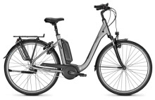 E-Bike Raleigh KINGSTON 7 torontogrey Comfort