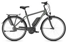 E-Bike Raleigh JERSEY 8 cumberlandgrey Diamant