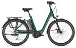 E-Bike Raleigh CORBY 9 XXL kombugreen Comfort