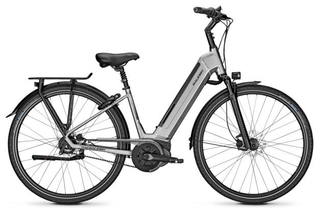 E-Bike Raleigh BRISTOL PREMIUM steelgrey Wave 2020