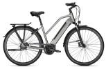 E-Bike Raleigh BRISTOL PREMIUM steelgrey Trapez