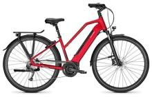 E-Bike Raleigh BRISTOL 9 barolored Trapez