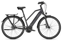 E-Bike Raleigh BRISTOL 8 phantomgrey Trapez
