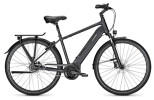 E-Bike Raleigh BRISTOL 8 phantomgrey Diamant