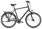 Citybike Raleigh CHESTER 8 XXL seablue Diamant