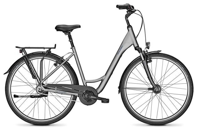 Citybike Raleigh CHESTER 8 steelgrey Wave 2020