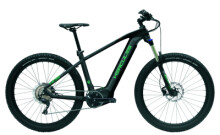 E-Bike Hercules NOS PRO 1.1