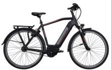 E-Bike Hercules ROBERT/A PRO I-R8 **