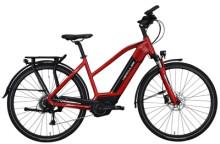 E-Bike Hercules FUTURA SPORT I 8.1 **