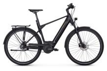 E-Bike Kreidler Vitality Eco 10 Nexus 8G Gates Disc