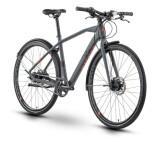 Urban-Bike Raymon UrbanRay 2.0