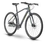Urban-Bike Raymon UrbanRay 1.0