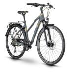 Trekkingbike Raymon TourRay 5.0