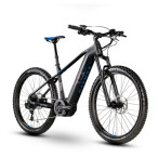 E-Bike Raymon E-NineRay LTD 1.0