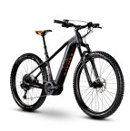 E-Bike Raymon E-NineRay LTD 2.0