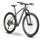Mountainbike Raymon HardRay Nine 5.0