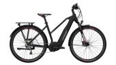 E-Bike Conway Cairon T 200 SE 500 schwarz,rot