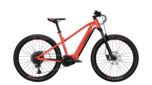 E-Bike Conway Cairon S 627 schwarz,rot